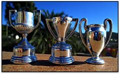 Copa, Lliga i Champions (Jess Cano Snchez) Tags: espaa cup canon football spain soccer catalonia catalunya futbol bara copa league champions catalua valles liga espanya vallesoriental lliga bigues elsenyordelsbertins copadeuropa barcelonaprovincia cinglesdeberti biguesiriells lavalldeltenes ixus310hs