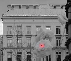 Le 9 de coeur - Heart 9 (p.franche) Tags: brussels flower fleur architecture europe belgium belgique panasonic dxo brussel hdr belge dsaturationpartielle fz200 pascalfranche pfranche architectory lesneufprovinces