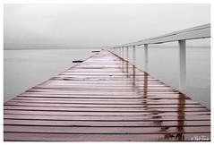IMG_1879b (Copy) 30 30 (gluemetothefloor) Tags: lake wet water rain long timber jetty rainy longjetty