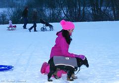Winter (Natali Antonovich) Tags: park christmas winter portrait dog snow nature childhood animal children frost belgium belgique belgie lifestyle tradition relaxation sled sleding sledging lahulpe christmasholidays
