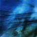 Ancient Seas 15