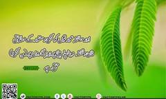 Surah Al-Baqrah Verse No 241 (faizme28) Tags: alquran albaqrah
