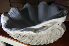 Grey Giant Clam Shell SINK 3 (LittleGems AR) Tags: ocean sea sculpture sun beach home statue giant bathroom shower aquarium soap sand bath sink natural contemporary unique decorative shell craft style toilet towel clam basin special shampoo taps wash ornament gift seashell pearl nautical reef decor spa luxury opulent fossils oneoff clamshell mollusks cloakroom bespoke tridacna sculpt crafted gigas facetowel