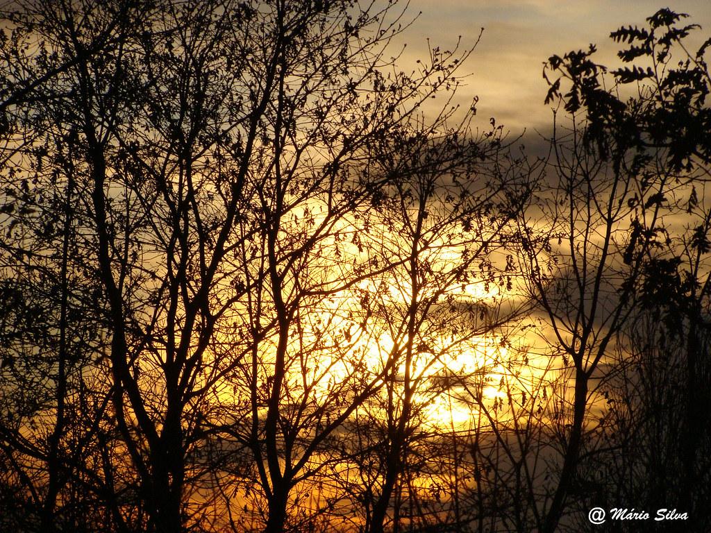 Águas Frias (Chaves) - ... pôr do sol entre o arvoredo ...