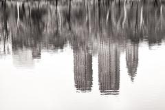 NewYork Reflected_7369 (adp777) Tags: nyc newyorkcity centralpark manhattan