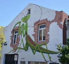 Grass Hopper (quarterdeck888) Tags: streetart graffiti nikon flickr fitzroy wallart frosty quarterdeck d7100 jerilderietruckphotos