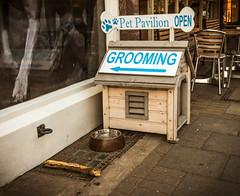 Pet Pavilion (MM Photo's) Tags: dog pet village bowl business story grooming stick parlour wimbledon telling