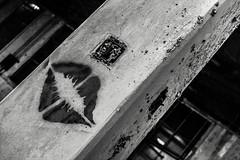 Turned On (Off The Beaten Path Photography) Tags: abandoned digital canon urbandecay indiana adventure explore forgotten gary dslr abandonment slowdeath urbex garyindiana whatremains 60d canon60d abandonedindiana dieslowly