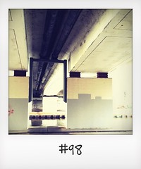 """#DailyPolaroid of 4-1-16 #98 • <a style=""""font-size:0.8em;"""" href=""""http://www.flickr.com/photos/47939785@N05/24818421820/"""" target=""""_blank"""">View on Flickr</a>"""