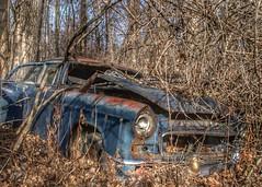 DSC08561.ARW-01 (juice95m3) Tags: abandoned rust vintagecar automobile junkyard oldcars classiccars