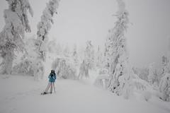 Même pas froid (Sven Vietmeier) Tags: schnee finnland lappland kuer äkäslompolo laponie schneeschuhwandern raquetteàneige kuertunturi