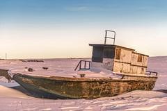 Tuk Tug (savillent) Tags: morning winter snow beach landscape francis photography boat nikon day year sunny arctic anderson 40 february leap climate minus d800 2016 tuktoyaktuk savillent