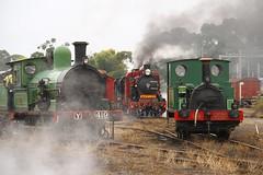 Steam line up (Aussie foamer) Tags: train railway victoria newport locomotive preserved vr steamlocomotive zclass kclass yclass victorianrailways steamrail k190 z526 y112 y419 newportworkhops scienceworksvictoria