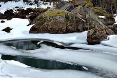 The movement of Spring (mariya_ka) Tags: snow ice nature water norway river spring travels rocks northern tamron d600 nikond600