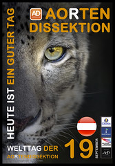Aortic Dissection Awareness Day Snow Leopard September 19 Austria (T Sderlund) Tags: snow day september leopard awareness 19 snowleopard unica aorta dissection panthera awarenessday aortic september19 dissektion pantheraunica aorticdissection aortendissektion aorten