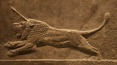 British Museum : Lion hunting - sport of the kings of Assyria - 650 BC (dirk huijssoon) Tags: hunting lion britishmuseum lionhunt assyria