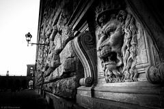 The roaring wall (Anthony P.26) Tags: city travel family blackandwhite bw italy sculpture building tourism monochrome statue stone wall cat canon lights florence blackwhite construction italian feline king italia power head decorative wildlife decoration lion royal highcontrast duke places landmark palace carving relief bust firenze crown highkey lamps pittipalace ornate miscellaneous ornamental ruler medici façade effigy regale whiteandblack statuesque palazzopitti kingly travelphotography aristocratic famousplaces macroother canon1585mm canon70d