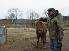R0026473 (joachimelbing) Tags: mit lustig yoyo spielen pferden yoyogame