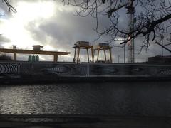 34/365 Cranes