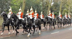 queen,s lifeguards-household cavalry mounted regiment /15./04/2016/ (philipbisset275) Tags: unitedkingdom centrallondon constitutionhill cityofwestminster queenslifeguards englandgreatbritain householdcavalrymountedregiment 15042016