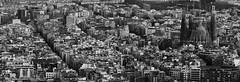 Barcelona (borjamuro) Tags: barcelona city bw panorama espaa building familia architecture spain arquitectura edificios nikon 7100 edificio ciudad panoramic catalonia bn architectural espana bunker carmel catalunya sagrada catalua bunkers cataluna d7100