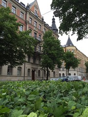 stermalm, Stockholm (stermalm) Tags: sweden stockholm snapshots sverige ostermalm stermalm strandvgen karlaplan strandvagen stermalmsnapshots