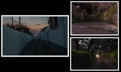 Caminos (Victoriano Rivero) Tags: espaa cloud paisajes naturaleza calle andaluca nikon plantas arboles camino cam huelva ciudades caminos coche cielo lugares nubes campo fotografia nuages anochecer anoitecer nocturno excursin higueradelasierra decampo nikond90 joselosada