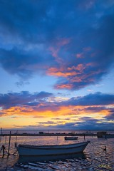 ...Jeremy 2... (fredf34) Tags: light sunset sea sky panorama sun france nature water clouds landscape soleil pond pentax natur sigma explore paysage ricoh contrejour calme 1850 tang barques k3 languedocroussillon hrault thau bassindethau beautifulearth sigma1850f28 fredf tangdethau fotopro fredf34 pentaxk3 ricohpentaxk3 fredfu34 fotopromga684n
