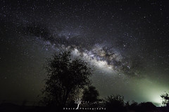 B  E  Y  O  N  D (Obaid_Musabbeh) Tags: longexposure travel trees sky tree colors beautiful beauty night digital photoshop lens stars landscape photography landscapes amazing colorful pretty space uae astro emirates galaxy hues adobe astrophotography astronomy nightsky alain universe astrology digitalphotography darksky auh markii stargazing milkyway postprocessing mark2 deepsky 14mm samyang startracker