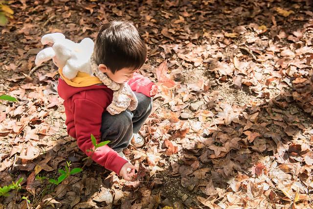 戶外親子攝影,全家福攝影推薦,兒童親子寫真,兒童攝影,南投清境攝影,紅帽子工作室,婚攝紅帽子,清境小瑞士攝影,清境農場親子,清境農場攝影,親子寫真,親子攝影,familyportraits,Redcap-Studio-57