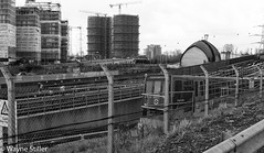 out of the ground (Wayne Stiller) Tags: street light people white black london train underground railway busy rush hour docklands dlr