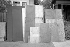 2016-269 (biosfear) Tags: berkeley mosaic plywood