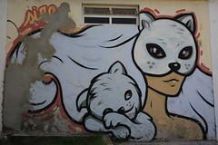 IMG_6918 (images54620) Tags: street streetart art brasil cat chat gato brasilia brsil brazilia masnada images54620 geraldmasnada