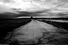 Balade printanire... (sabinelacombe) Tags: nature champs paca provence nuages coquelicot bouchesdurhone berreletang
