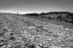 Where the streets have no name (lorenzolozigano) Tags: bw white mountain black nature landscape path stones walk trail sentiero montagna bianco nero bianconero monocrome lozigano