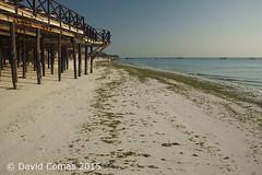Nungwi Beach (CATDvd) Tags: sea costa sunrise landscape tanzania island dawn coast mar alba paisaje nikond70s amanecer zanzibar isla illa paisatge nungwi salidadelsol unguja tanznia rasnungwi catdvd zanzbar nungwibeach davidcomas sortidadelsol httpwwwdavidcomasnet httpwwwflickrcomphotoscatdvd august2015