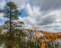 Bryce Canyon 8 (MarcCooper_1950) Tags: trees red sky orange snow colors clouds landscape utah nikon scenery rocks vivid canyon cliffs hills southern boulders hoodoo bryce rainfall hdr formations lightroom mounatins brycecanyonnationalpark geologic d810 marccooper