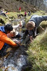 DSC_0197 (Geogrob) Tags: fieldwork edale grindsbrook goldenclough riverstudy rivernoe