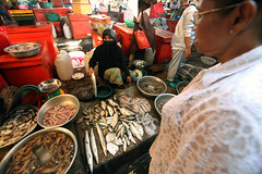 Market  Kampot (Julien Mailler) Tags: world travel ladies fish asian julien women asia cambodge cambodia cambodian khmer market muslim asie march nationalgeographic kampot asiatique reflectionsoflife lovelyphotos jules1405 cambodgien unseenasia earthasia mailler