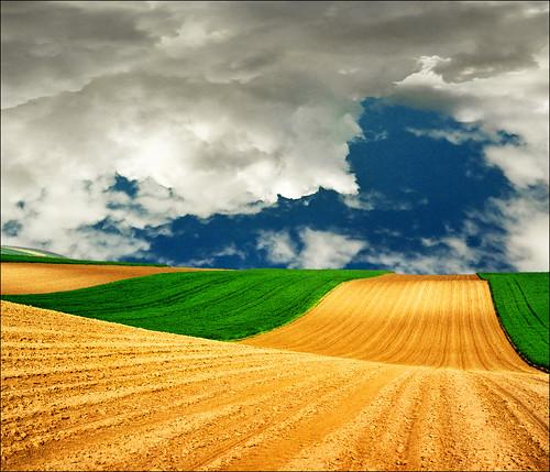 Flying carpet...:)))