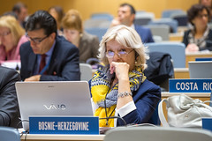 Standing Committee on the Law of Trademarks, Industrial Designs and Geographical Indications (WIPO | OMPI) Tags: wipo sct delegate ompi bosniaandherzegovina