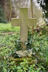 Graveyard Cross (EJ Images) Tags: uk england slr church grave graveyard countryside suffolk nikon nef cross headstone country d750 churchyard dslr brampton eastanglia 2016 nikonslr nikondslr bramptonchurch suffolkcountryside 24120mmlens ejimages nikond750 dsc481601
