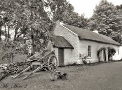 Old Homestead. (Mister_Mono) Tags: trees ireland blackandwhite house building mono cottage eire panasonic ulster dwelling monochrone ulsterfolkpark