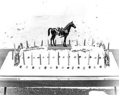 1970-01-19-Black Jack birthday-01 (Old Guard Museum) Tags: birthday old usa virginia unitedstatesofamerica guard caisson blackjack arlingtoncounty caissonplatoon 3rdinfantryregimentthe nancyschado