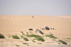 3-Oman-Desert-Marathon-Day-6_6623
