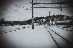 _JYC2463-2 (viewbynr.10) Tags: people snow ski nikon oakley bod geiranger d800 gopro