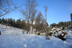 Çayırova'dan Kar Manzaraları 28