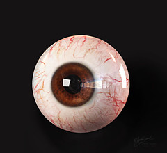 What rhymes with Eye? Look carefully, you'll find the answer. (uz360) Tags: red brown eye photoshop death eyes die reaper lazy veins concept nezumi uzairqadri uz360arts