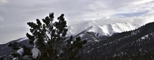 Trail West Landscape