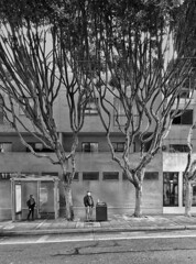 22 Stop (O Caritas) Tags: sanfrancisco california trees bw woman man mobile january cellphone busstop muni japantown 2016 fillmorestreet a 22line snapseed samsunggalaxysiii copyright2016bypatricktpowerallrightsreserved 2016012815442501 28january2016